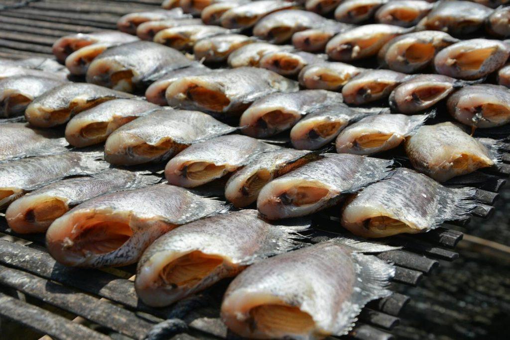ซื้อปลาสลิด ราคาส่ง มาขาย ดีไหม ทำกำไรได้หรือเปล่า